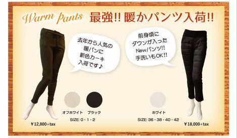 コピー ~ morioka_11_13_A5.jpg